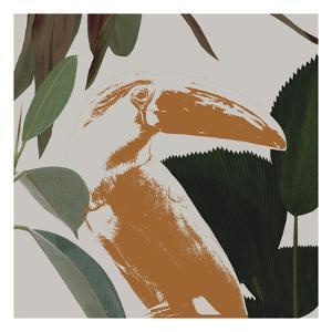 Graphic Tropical Bird III by Annie Warren