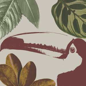 Graphic Tropical Bird V by Annie Warren