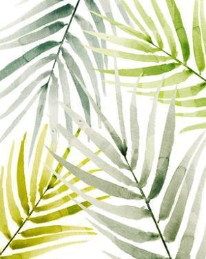 Shady Palm I by Annie Warren