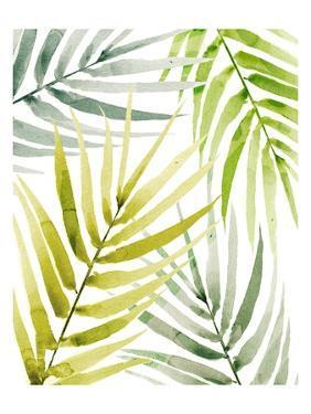 Shady Palm II by Annie Warren