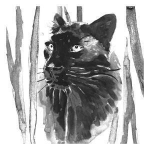 Still Cat I by Annie Warren