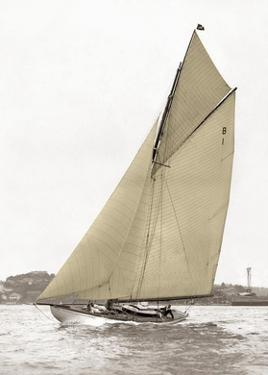 Victorian sloop on Sydney Harbour by Anonymous