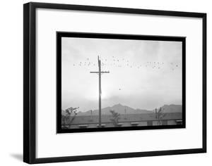 Birds on Wire by Ansel Adams