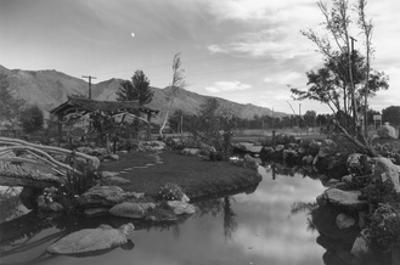 Pool in Pleasure Park by Ansel Adams