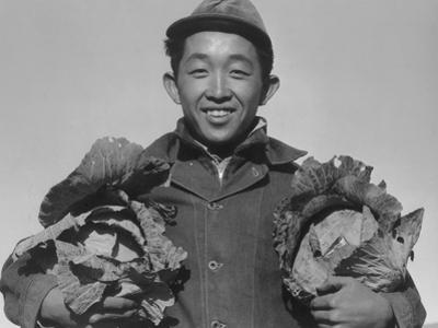 Richard Kobayashi, farmer with cabbages at Manzanar, 1943 by Ansel Adams