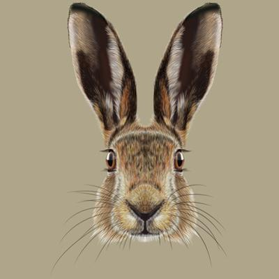 Illustrated Portrait of Hare by ant_art19