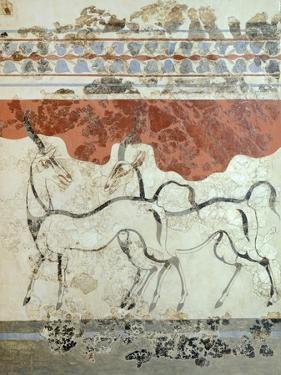 Antelopes, Akrotiri Fresco, Thera