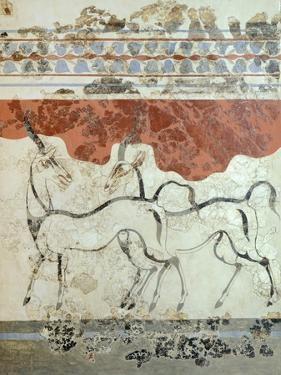 Antelopes, Akrotiri Fresco, Thera