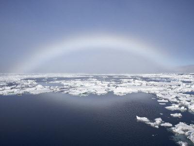 https://imgc.allpostersimages.com/img/posters/anthelion-svalbard-islands-arctic-norway-europe_u-L-P91BYN0.jpg?p=0