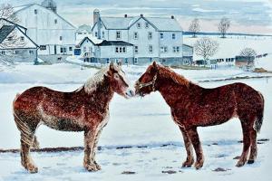 Horses, Amish Farm, Lancaster, Pa. by Anthony Butera