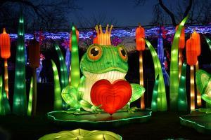 Winter Lantern Festival, Frog and Heart, 2018 by Anthony Butera