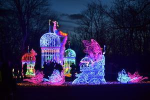 Winter Lantern Festival, Princess, 2018 by Anthony Butera