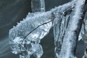 Branch Encapsulated In Ice Over Creek by Anthony Paladino