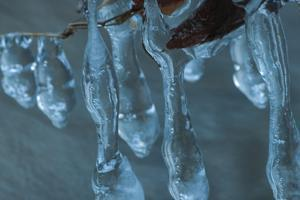 Little Ice Figures  Over Creek by Anthony Paladino
