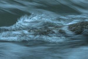 Waves Beating On Log by Anthony Paladino