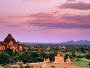 Pink Sky From Swesandaw Paya, Bagan, Myanmar (Burma) by Anthony Plummer