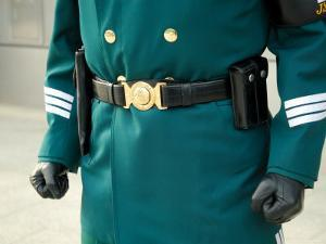 South Korean Rok Guard, Demilitarized Zone, Seoul, South Korea by Anthony Plummer