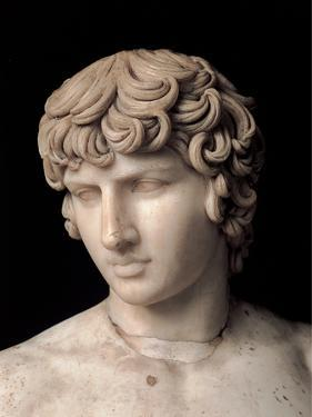 Antinous Farnese, 2nd Century, Marble, All Rounded