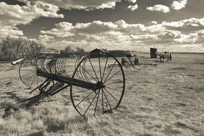 https://imgc.allpostersimages.com/img/posters/antique-hay-raker-prairie-homestead-cactus-flat-south-dakota-usa_u-L-PN6QIW0.jpg?artPerspective=n