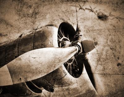 Antique Plane II