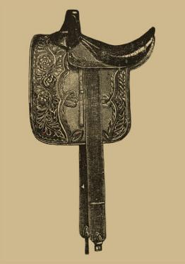 Antique Saddle III