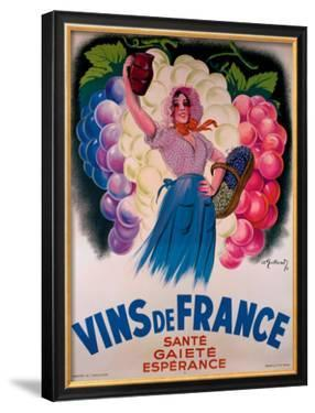 Vins de France by Antoine Galland