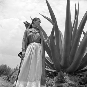 Frida Kahlo - Stance by Antoinette Frissell