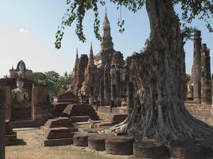 The Old Buddhist Temple of Wat Mahathat, Sukhothai, UNESCO World Heritage Site, Thailand by Antonio Busiello