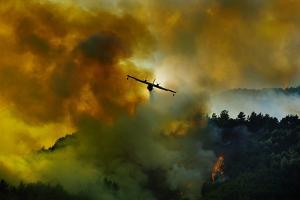 Canadair Aircraft in Action - Fighting for the Salvation of the Forest. by Antonio Grambone