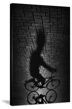 Shadow Bike by Antonio Grambone