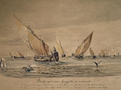 Chioggia Fishing Boats, 1882, Italy