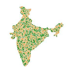 India (Asia) in a Mosaic of Triangles by aperitivi