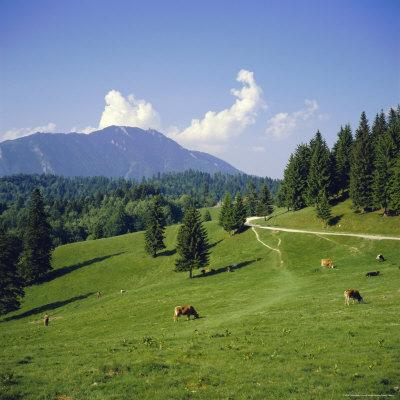 https://imgc.allpostersimages.com/img/posters/apline-pastures-on-the-edge-of-the-bucegi-mountains-carpathian-mountains-transylvania-romania_u-L-P2QU4Z0.jpg?p=0
