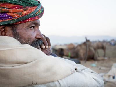 Camel Trader Overseeing Camels by April Maciborka