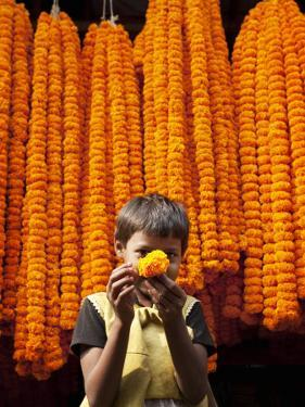 Little Girl Showing Off Marigold That She Stole from Beautiful Strings of Flowers by April Maciborka