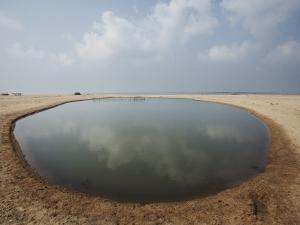 Man-Made Shrimp Pond by April Maciborka