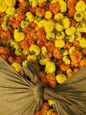 Single Marigolds of Yellow and Orange are Sold by Bagful to Local Worshippers by April Maciborka
