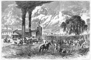 Sugar Plantation, New Orleans, 1870 by AR Ward