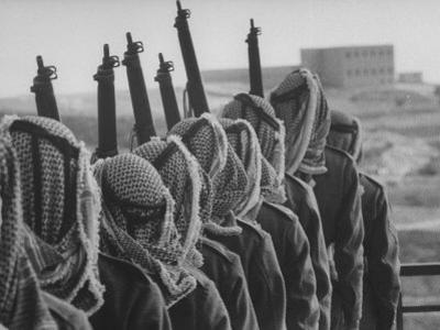Arab Legion Standing in Formation