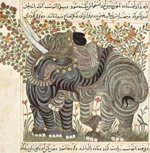 Arab painters around 1295 (Book about the usefulness of the animals of Abu Sa'id 'Ubayd Allah ibn B