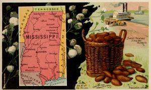 Mississippi by Arbuckle Brothers