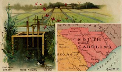 South Carolina by Arbuckle Brothers