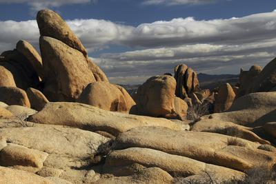 https://imgc.allpostersimages.com/img/posters/arch-rock-trail-joshua-tree-national-park-california-usa_u-L-PN6WJJ0.jpg?p=0