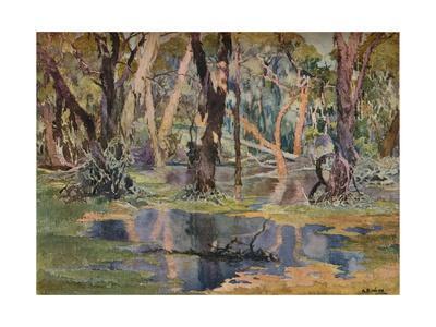 'Quindanning Pool', c1927