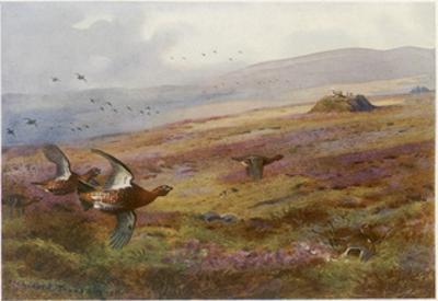 Edward VII at Balmoral by Archibald Thorburn