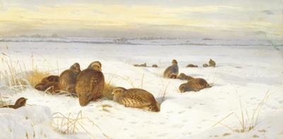 Partridges in a Winter Landscape by Archibald Thorburn