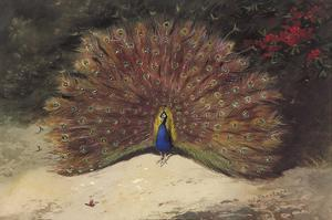 Peacock by Archibald Thorburn