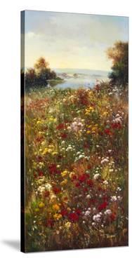 Wildflower Meadow I by Arcobaleno