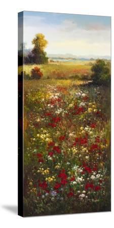 Wildflower Meadow II