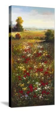 Wildflower Meadow II by Arcobaleno